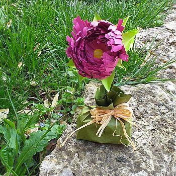 /images/0/3/03-fiori-quavio-3.jpg