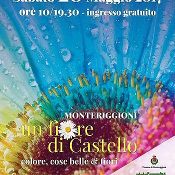 /images/0/5/05-un-fiore-di-castello.jpg