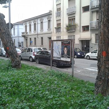 /images/1/1/11-vittoria-alberi--3-.jpg