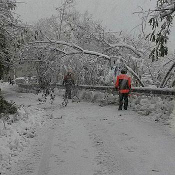 /images/1/3/13-neve-toscana-f.jpeg