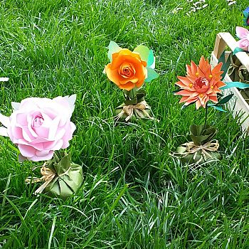 /images/1/6/16-fiori-quavio-2.jpg