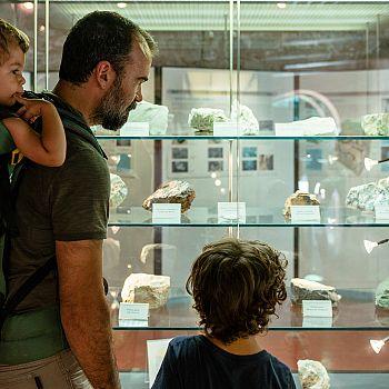/images/1/6/16-parco-archeominerario-di-san-silvestro---museo-dei-minerali.jpg