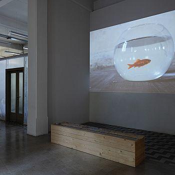 /images/1/8/18-ws2-rä-di-martino---raw-fish-2-ph-leonardo-morfini.jpg