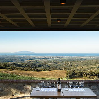 /images/3/0/30-pp-winery--outdoor-terrace.jpg
