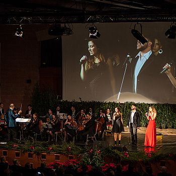 /images/3/1/31-concerto-2017.jpg