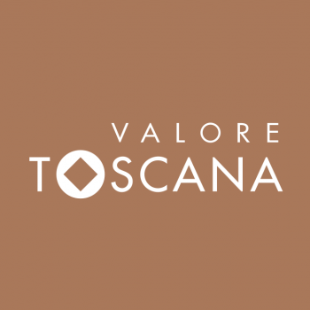 /images/3/1/31-valore-toscana-terra-siena.png