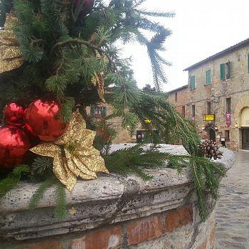 /images/3/2/32-piazza-roma---castello-monteriggioni.jpg