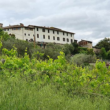 /images/3/3/33-castello-di-castiglionchio.jpg