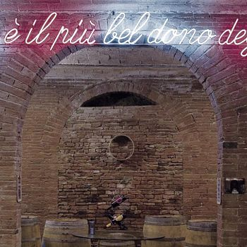 /images/3/5/35-02-tenuta-poggio-al-pino-cantina.jpg