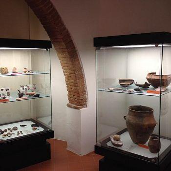 /images/3/6/36-allestimento-museo-civico-per-la-preistoria-del-monte-cetona--1-.jpg