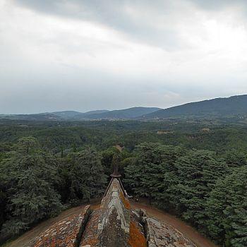 /images/3/9/39-sammezzano--fotocronaca-di-una-visita-guidata--25-luglio-2021--36-.jpg
