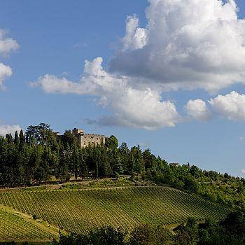 /images/4/7/47-castello-di-meleto-l.jpg