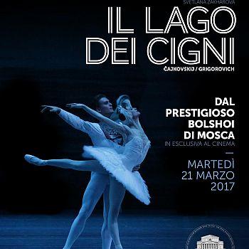/images/4/9/49-loc-lago-dei-cigni.jpg