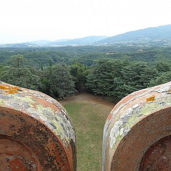 /images/4/9/49-sammezzano--fotocronaca-di-una-visita-guidata--25-luglio-2021--32-.jpg