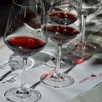 /images/5/1/51-wine-e-siena-2.jpg