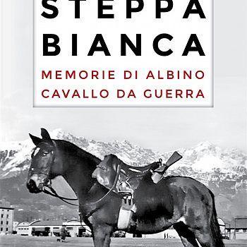 /images/5/6/56-steppabianca.jpg