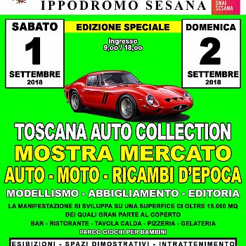 /images/5/7/57-toscana-auto-montecatini-a6.jpg