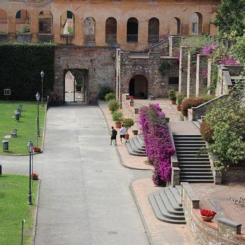 /images/5/8/58-2021-06-23-sindaco-camminamento-giardino-scotto--5-.jpg