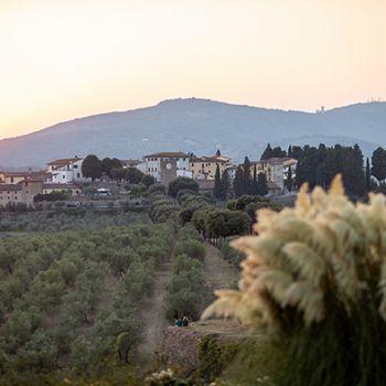 /images/7/0/70-borgo-artimino--alessandromoggi.jpg