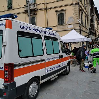 /images/7/5/75-nogra-ambulanza.jpg