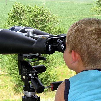 /images/8/1/81-birdwatching-nel-padule-di-fucecchio--foto-di-enrico-zarri-.jpg