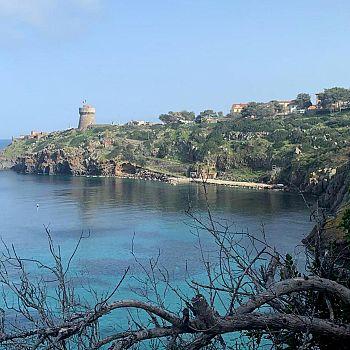 /images/8/3/83-l-isola-di-capraia.jpg