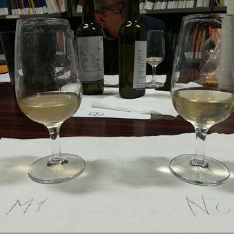 /images/8/7/87-analisi-sensoriale-vino.jpg