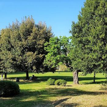 /images/8/7/87-pratone-alberato-est-parco-villa-favard-rovezzano.jpg