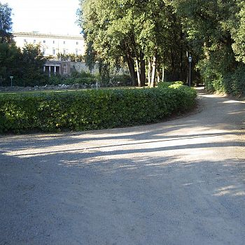 /images/9/2/92-villa-chigi---parco.jpg