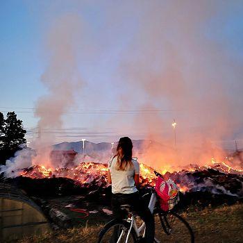 /images/9/5/95-incendio-cascine5.jpeg