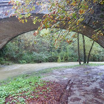 /images/9/9/99-sul-torrente-carza--a-vaglia--6-novembre-2019--1.jpg